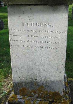 Zerviah <i>Nye</i> Burgess