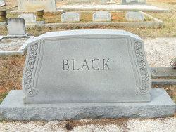William Flowe Black