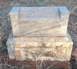 Mary A. Adamson