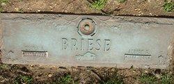 Briese Albert