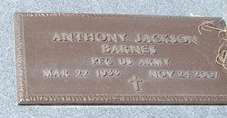 Anthony Jackson Barnes