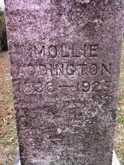 Mollie Addington