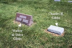 Charles Robert Gibbs
