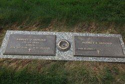 Audrey E Arnold