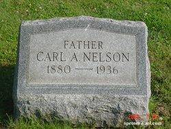 Carl A Nelson