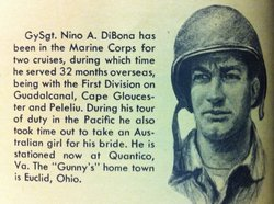 Nino Anthony DiBona