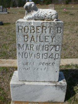 Robert B Bailey