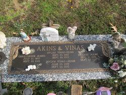 Rylan Vinas Akins