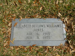 Elizabeth Anne <i>Bellows</i> Williams