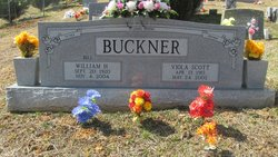 Viola <i>Scott</i> Buckner