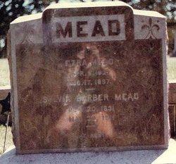 Ezra Mead