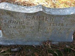 Ellen Elizabeth <i>Riley</i> Carter