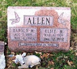 Elsie Marie <i>Lemons</i> Allen