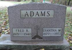 Diantha M Adams