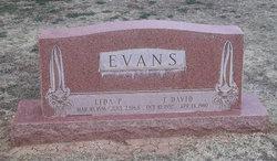 Sarah Lida Pearl <i>Ward</i> Evans