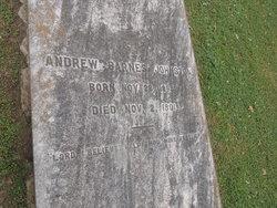 Andrew Barnes Johnston