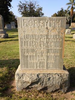 Andrew E Forsyth