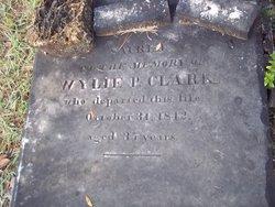 Wylie Pope Clark
