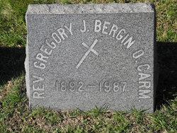 Rev Fr Gregory James Bergin