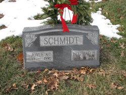 Joyce Ann <i>Heller</i> Schmidt