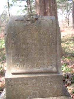 Mary Elizabeth Fowler