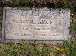 Ray Leopold Amos