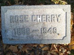Rose <i>Pollack</i> Cherry