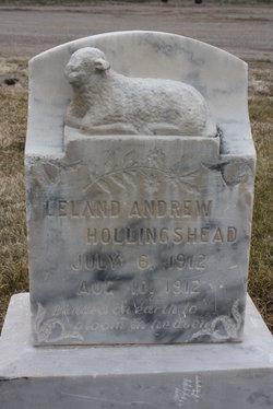 Leland Andrew Hollingshead
