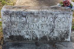 Andrew Jackson Cone