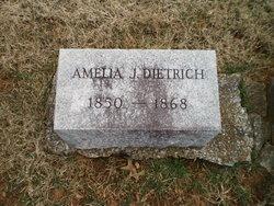 Ameila J Dietrich