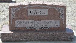 Nancy T <i>Heer</i> Carl