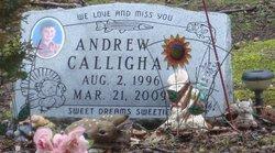 Andrew Callighan
