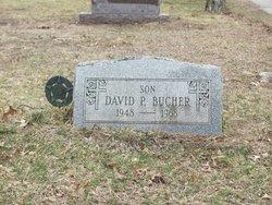 David P Bucher