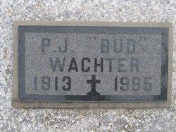 Peter J Bud Wachter