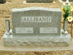 Joan J. <i>Ulbrich</i> Alliband