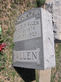 Ellie H Allen