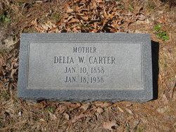 Delia <i>Whitley</i> Carter