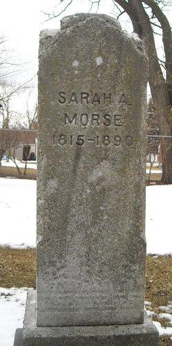 Sarah A Morse