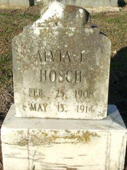 Alvia E Hosch