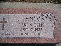 Aaron Ellis Johnson