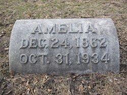 Amelia <i>Franzen</i> Tarnow