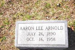 Aaron Lee Arnold