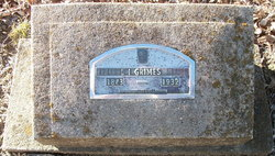 L. I. Grimes