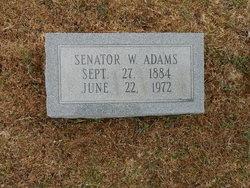 Senator W. Adams