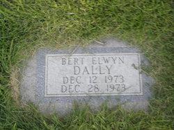 Bert Elwyn Dally