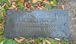 Amy E Hicks