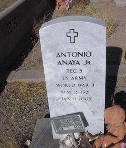 Antonio Anaya, Jr