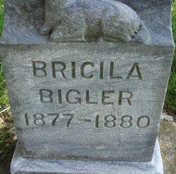 Bricila Bigler