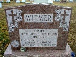 Bonnie D <i>Witmer</i> Amorosi