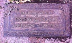 Ernest C Crosby